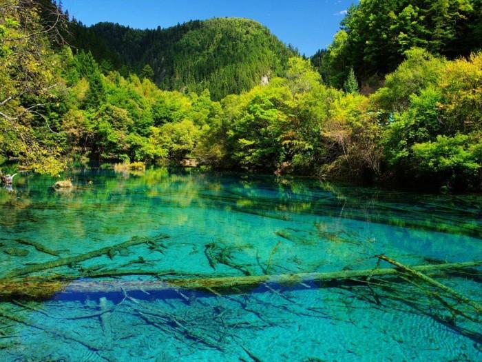 Crystalline Turquoise Lake, Jiuzhaigou National Park, China | Good Food...  Good Life